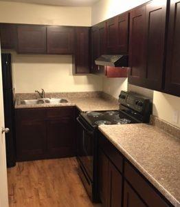 Updated kitchen 2 (2)