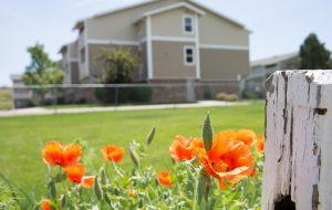 Denver gardens exterior with flowers low res